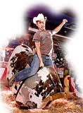 Combo Mechanical Bull and Mechanical Surfboard Rental for $528